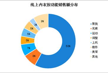奚梦瑶再上维密 中国女性内衣市场规模分析(图)