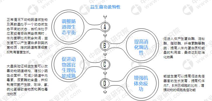 益生菌具备4大功能特性 益生菌膳食补充剂竞争格局分析(图)