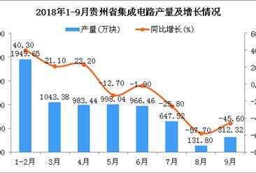 2018年1-9月贵州省集成电路产量为7032.61万块 同比增长15.5%