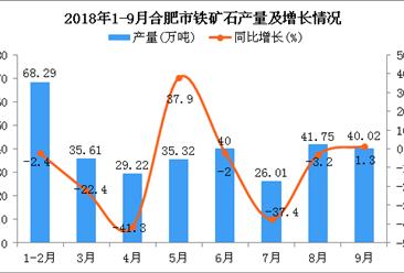 2018年1-9月合肥市铁矿石产量为316.22万吨 同比下降11.3%
