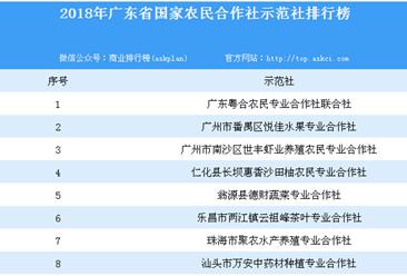 2018年广东省国家农民合作社示范社排行榜