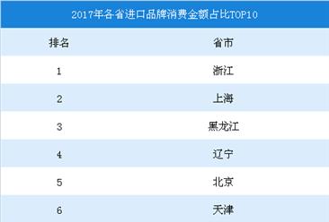2017年各省进口品牌消费金额占比排行榜TOP10