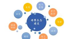 母婴垂直电商存在4大优势 未来母婴垂直电商发展战略分析(图)
