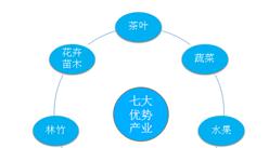 福建省发布加快实施乡村振兴战略十条措施 加快推进乡村振兴进程(图)