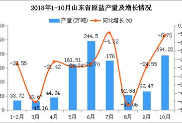 2018年1-10月山东省原盐产量为1004.41万吨 同比下降20.5%