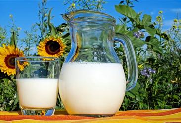 2018年11月国内牛奶市场预测分析:国内生鲜乳收购价小幅上涨