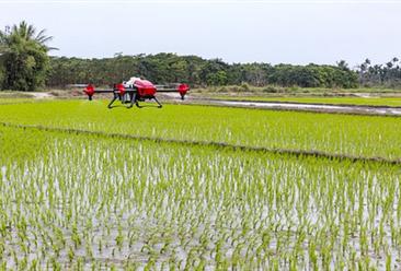 数字农业成农业发展所趋  数字农业六大商业模式分析(图)