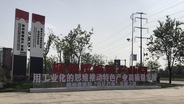 中商产业研究院赴柳州对螺蛳粉产业进行实地调研