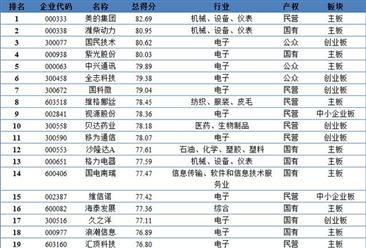 2018年中国上市公司无形资产百强排行榜