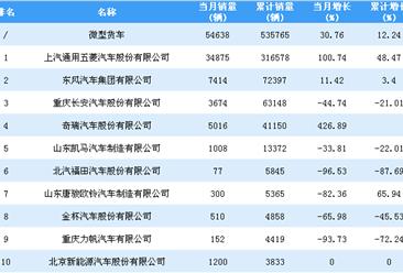 2018年1-10月微型货车企业销量排行榜TOP10