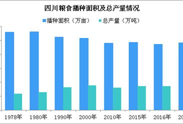 大力实施乡村振兴战略 四川农业经济呈跳跃式增长(附图表)