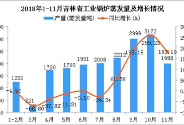 2018年1-11月吉林省工业锅炉蒸发量为19375蒸发量吨 同比增长41%