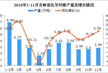 2018年1-11月吉林省化学纤维产量同比增长2.48%