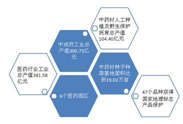 贵州省第四届大健康医药产业发展大会召开  苗药是健康医药产业发展重点(图)