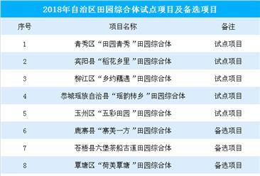 2018年广西田园综合体试点项目及备选项目名单汇总(附名单)