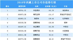 2018年西藏上市公司市值排行榜