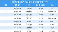 2018年湖北省上市公司市值百強排行榜