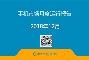 小鱼儿玄机2站年1-12月中国手机市场月度运行报告(完整版)