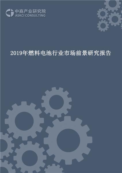 2019年燃料电池行业市场前景研究报告