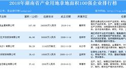 产业用地情报:2018年湖南省产业用地拿地面积100强企业排行榜