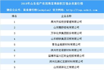 产业用地情报:2018年山东产业用地拿地面积百强企业排行榜