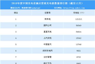 2018年中国充电设施运营商充电桩数量排行榜