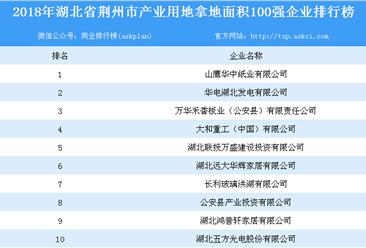 产业用地情报:2018年湖北省荆州市产业用地拿地面积100强企业排行榜