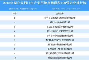 产业用地情报:2018年湖北省荆门市产业用地拿地面积100强企业排行榜