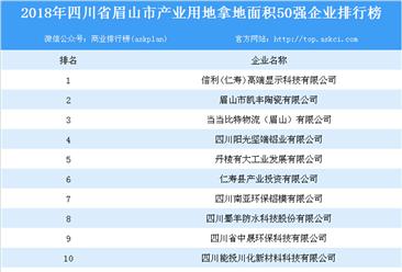 产业用地情报:2018年四川省眉山市产业用地拿地面积50强企业排行榜