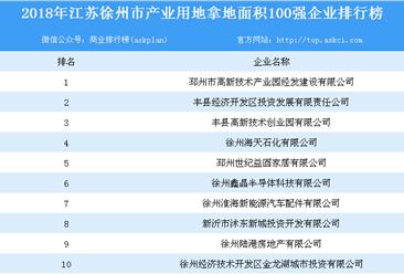 产业用地情报:2018年江苏省徐州市产业用地拿地面积100强企业排行榜