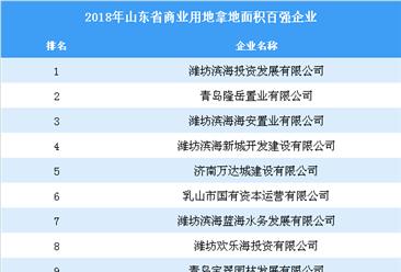 商业地产情报:2018年山东省商业用地拿地百强企业排行榜