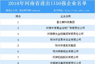 2018年河南省进出口50强企业排行榜