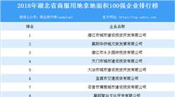 商業地產招商情報:2018年湖北省商服用地拿地面積百強企業排行榜