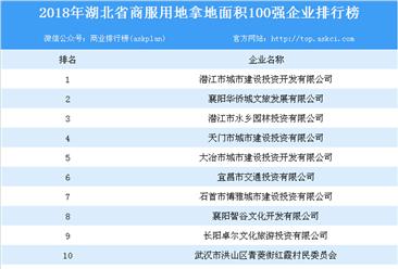 商业地产招商情报:2018年湖北省商服用地拿地面积百强企业排行榜