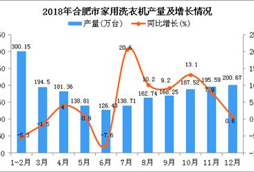 2018年合肥市家用洗衣机产量同比增长2.3%