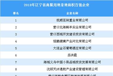商业地产招商情报:2018年辽宁省商服用地拿地面积百强企业排行榜