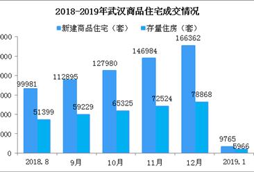2019年1月武汉楼市成交数据分析:2019年武汉房价还会涨吗?