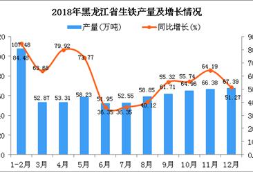 2018年黑龙江省生铁产量为695.68万吨 同比增长58.56%