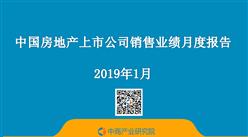 2019年1月中国房地产行业经济运行月度报告(完整版)