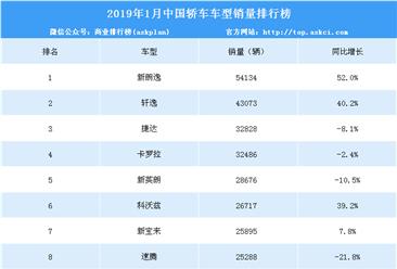 2019年1月中国轿车车型销量排行榜