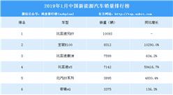 2019年1月中国新能源汽车销量排行榜