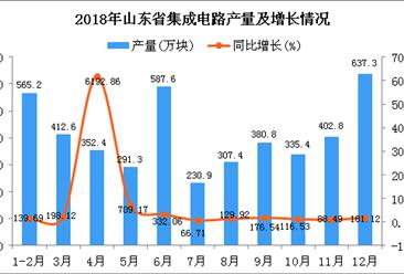 2018年山东省集成电路产量为4503.7万块 同比增长189.25%