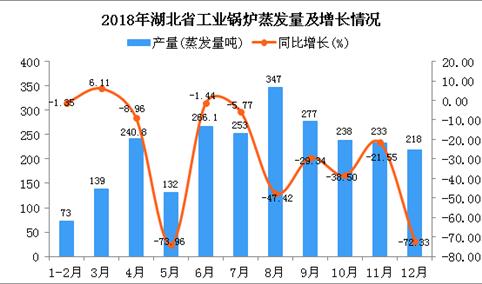 2018年湖北省工业锅炉蒸发量同比下降40.16%