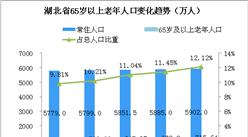 湖北省老龄化程度进一步加剧  2019全面取消养老机构设立许可  (图)