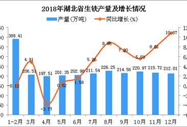 2018年湖北省生铁产量为2498.81万吨 同比增长4.06%