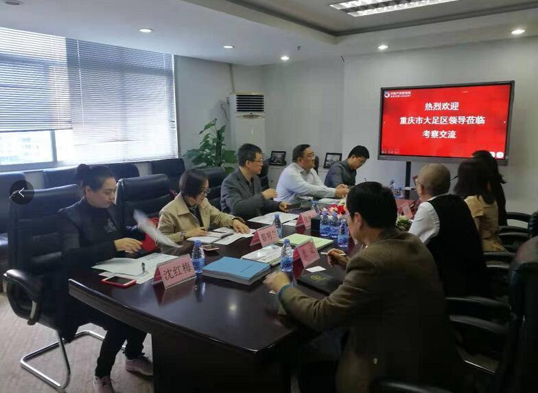 重庆大足区领导莅临中商产业研究院考察洽谈