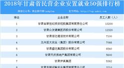2018年甘肃省民营企业安置就业50强排行榜