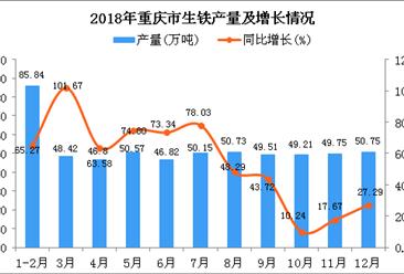 2018年重庆市生铁产量为578.55万吨 同比增长50.62%