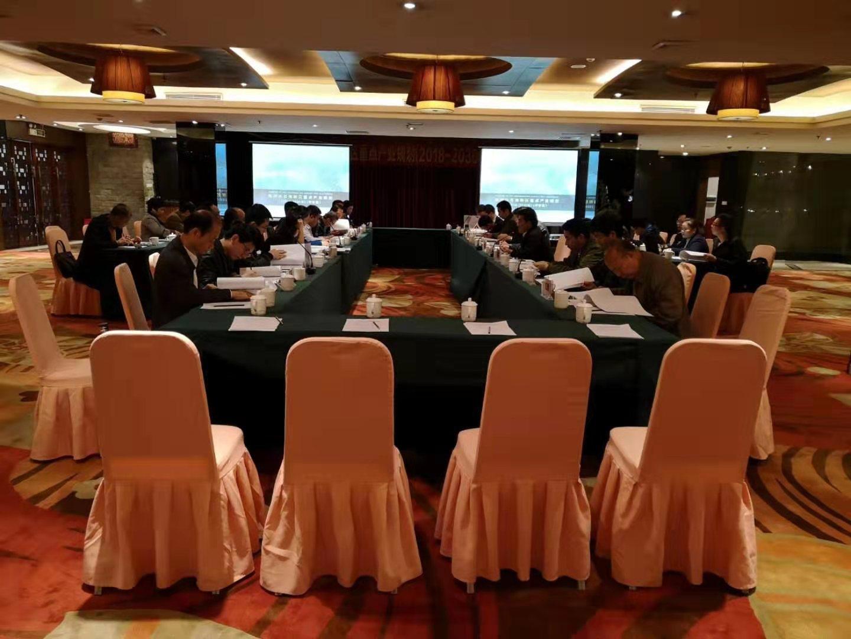 梧州市苍海新区重点产业规划(2018-2030)通过专家评审