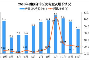 2018年西藏自治区发电量为59.5亿千瓦小时 同比增长20.93%